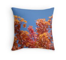 Blue Sky Sunny Red Orange Autumn Leaves art prints Throw Pillow