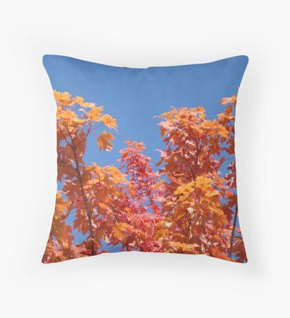Blue Sky Sunny Red Orange Autumn Leaves art prints Throw Pillow