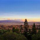 Waikoloa  by Ellen Cotton