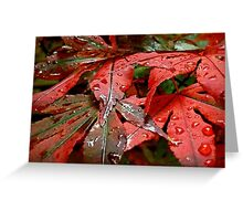 Touch Me In The Rain Greeting Card