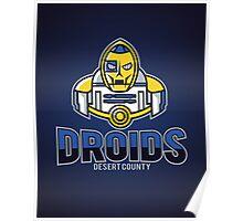 Desert County Droids Poster