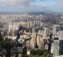 Down Town Buenos Aries Aerial by Carole-Anne