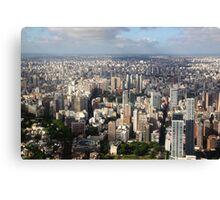 Down Town Buenos Aries Aerial Canvas Print