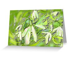 SNOWDROPS GRAPHIC ART AND PHOTO Greeting Card