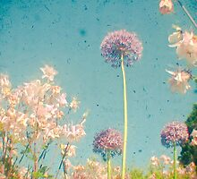 Garden by Cassia