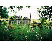 Alenka's Garden Photographic Print