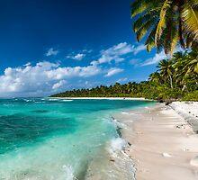 Life's a Beach at Trannies, West Island by Karen Willshaw