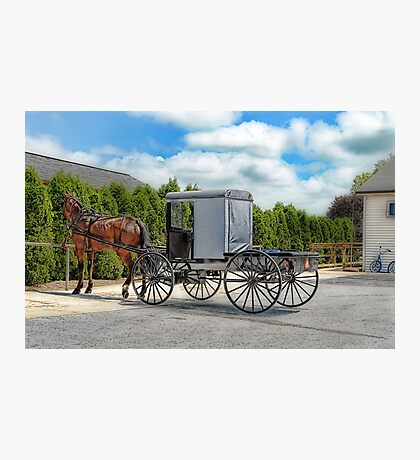 Horse & Buggy Photographic Print