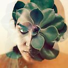 a green rose by Jessica  Lia