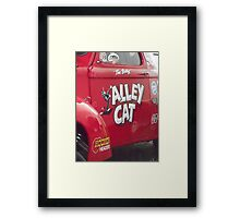 Alley Cat Indeed Framed Print