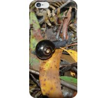 Tread Carefully in the Rainforest  iPhone Case/Skin