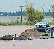 Mekong Boats 3 by Werner Padarin