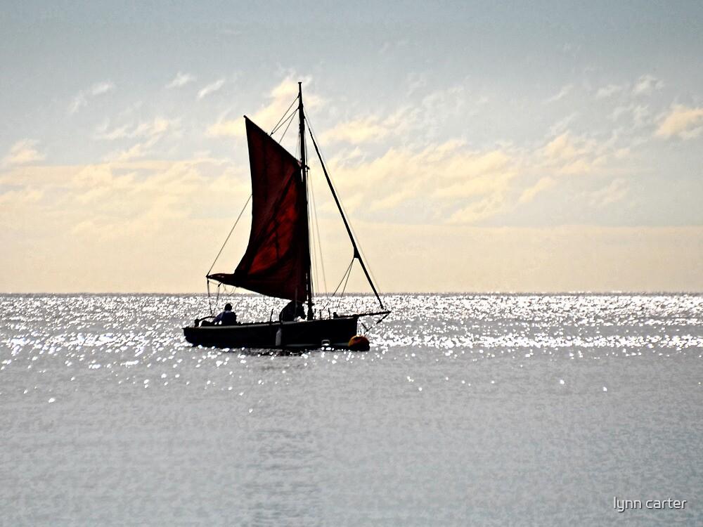 Smooth Sailing by lynn carter