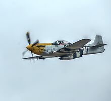 "P51D Mustang ""Ferocious Frankie"" by Stephen Hall"