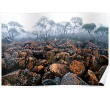 Mt. Wellington Tasmania Poster