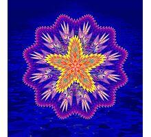 Starfish Blues Photographic Print