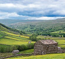Dales Barns at Kison Swaledale by Nick Jenkins