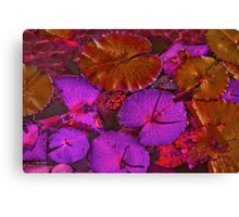 Waterlilies Leafs at the Local Pond Canvas Print