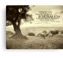 Pray for the Peace of Jerusalem (Mount of Olives) - ca 1910 Canvas Print