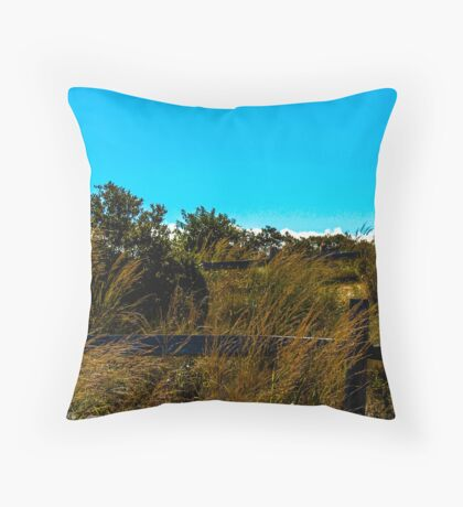 Fences in Grass Throw Pillow