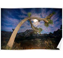 Joshua Tree Moon Landscape Poster