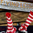 Eaton, OH: Flying Lessons by ACImaging