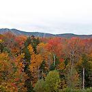 Autumn Spectrum  by DreamCatcher/ Kyrah