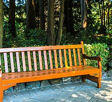 Shiny Bench by MattyBoh424