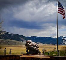 American Bear by Ashley Hirst