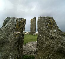 Standing Stones of Stenness by Stephen Hall