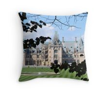 Framing the Biltmore Throw Pillow