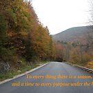 Ecclesiastes 3:1 by DreamCatcher/ Kyrah