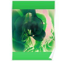 6548mi Orchid Goddess Poster