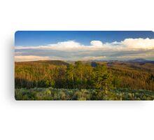 Cottonwood Pass Canvas Print