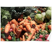 Lettuce Peppers Radishes and Broccoli Poster