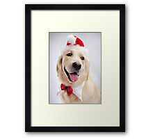 Cute Golden Retriever Wearing Santa Hat art photo print Framed Print