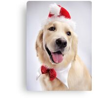 Cute Golden Retriever Wearing Santa Hat art photo print Canvas Print
