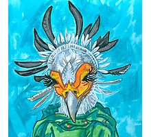 secretary bird Photographic Print
