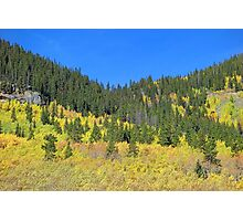 Guanella Pass Study 1  Photographic Print