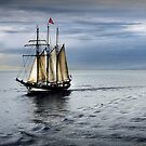 Homeward Bound - Evening Departure by bekyimage