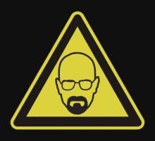 Walter White Warning by livinthing