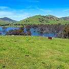 Hume Wier - Tallangatta Valley by Mark  Lucey