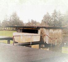 battery control station by Dawna Morton