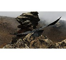 Soaring Mountain Raven Photographic Print