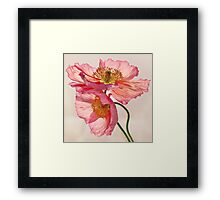 Like Light through Silk Framed Print