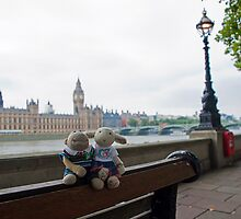 Houses of Parliament by twinnieE