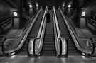 Escalate by AJM Photography