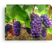I Be Grape ~ Grapes ~ Metal Print