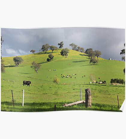Rolling Hills! Poster