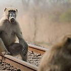 Waiting For A Train by Peter O'Hara